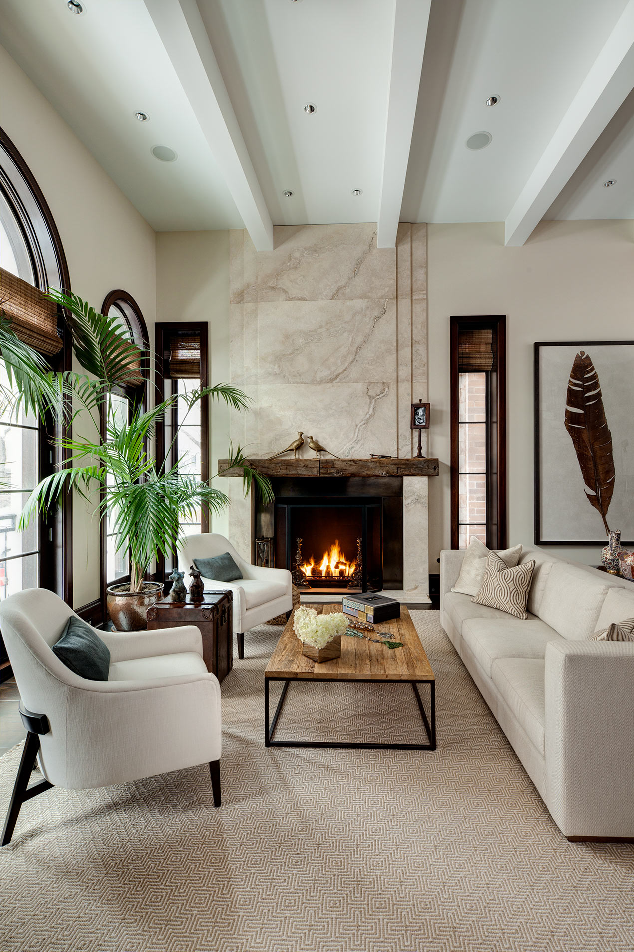 Cari Giannoulias Design Chicago based Interior Designer